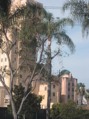 CHA Day 4: Leaving Anaheim! 9