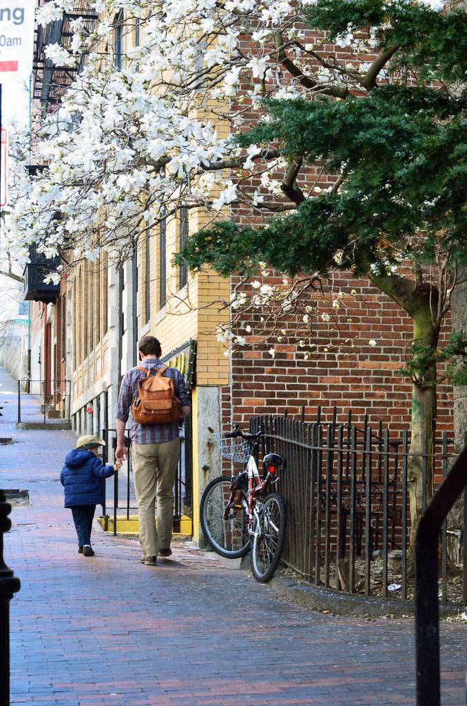 Boston/Public Garden
