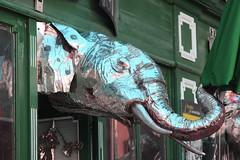 voir un éléphant bleu