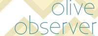 olive observer button copy 3 200 x 75