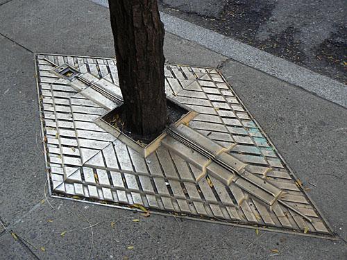 grilles d'arbres.jpg