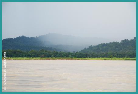 Chitwan-5