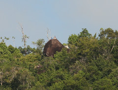 Guyana-0148