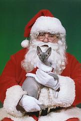 Giguhl Santa