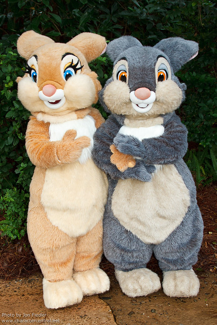 WDW Oct 2011 - Meeting Thumper and Miss Bunny
