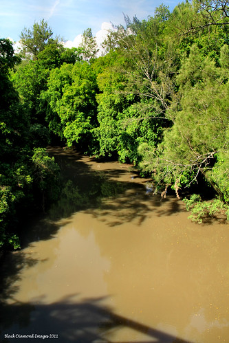 View North from RTA Bridge No.1950 - Historic Duff's Bridge, Dingo Creek, Manning Valley, NSW