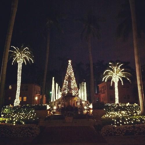 #christmastime #christmas #christmastree