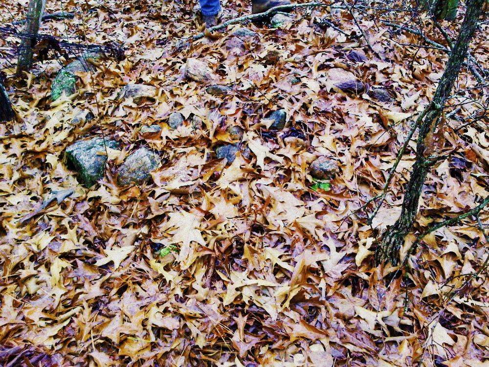 Rock Mound-Mullins Cemetery, Meriwether County, Ga