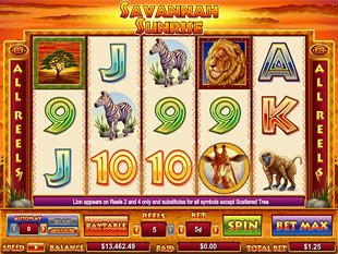 Savannah Sunrise slot game online review