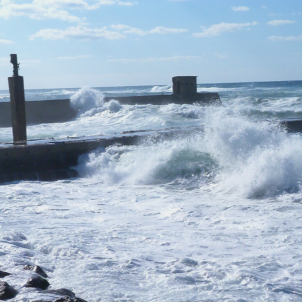 10-12-2011-mother-sea-wild