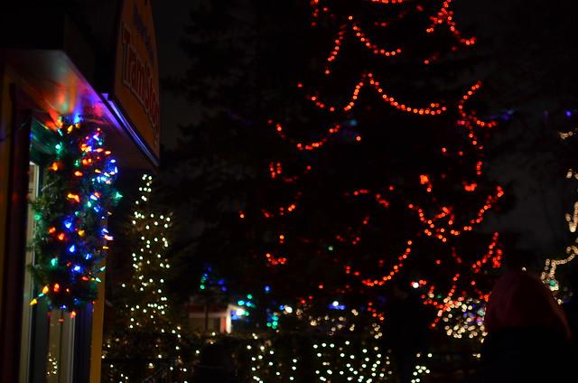 Brookfield Zoo Night Lights Christmas Lights At Brookfield Zoo 027  Christmas Lights . Brookfield Zoo Night Lights ...