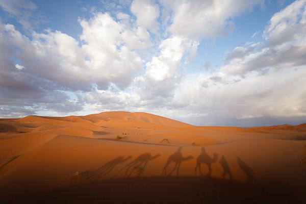 Maroc 2011 - Balade à dos de dromadaire