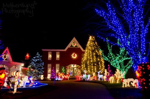 359:365疯狂的圣诞灯