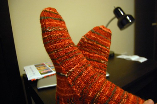 Tiger Stripes Socks