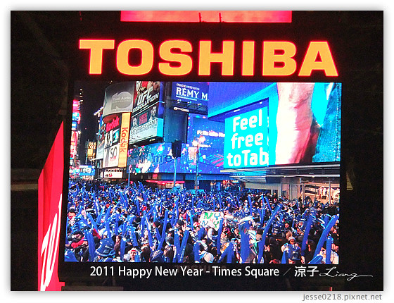 2011 Happy New Year - Times Square 3