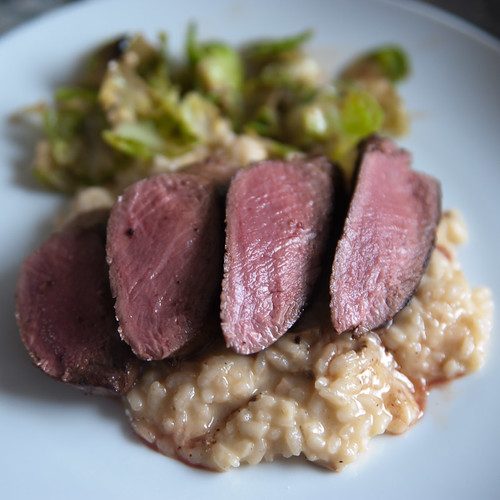 Loin of roe deer, cep risotto, sprout leaves