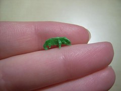 chameleon from fumiaki kawahata from 18mm square