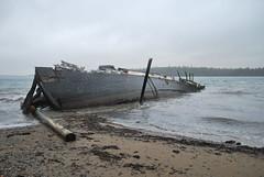 breakwater(0.0), pier(0.0), beach(1.0), sand(1.0), water(1.0), vehicle(1.0), sea(1.0), ocean(1.0), body of water(1.0), wave(1.0), shore(1.0), watercraft(1.0), shipwreck(1.0), coast(1.0), boat(1.0),