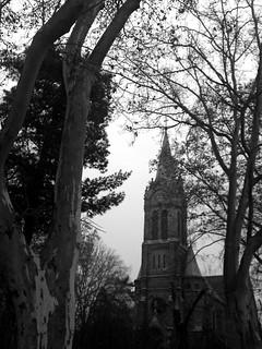 Templom fákkal
