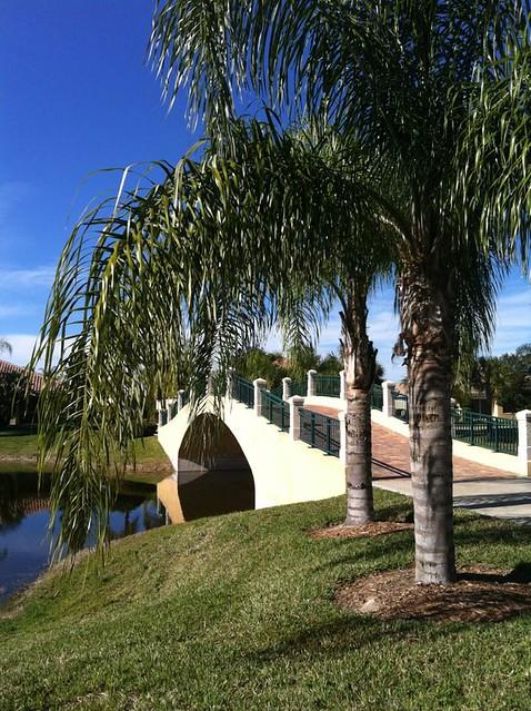 Florida Christmas 2011