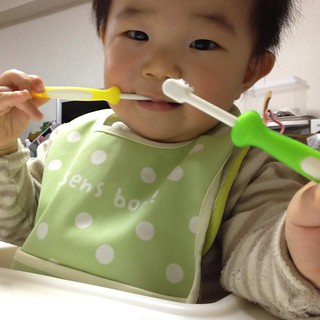 二刀流歯ブラシとらちゃん(2012/1/11)