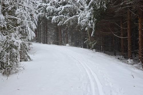 winter ski_269