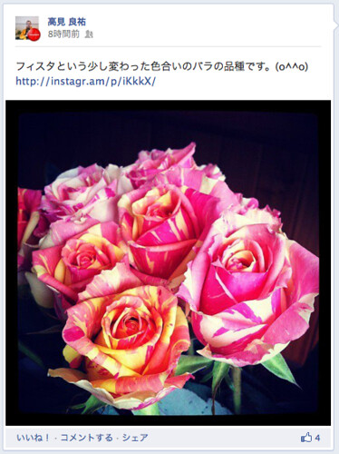 instagram1-2