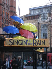 Singing In The Rain Umbrellas