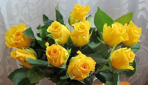 Keltaiset ruusut by Anna Amnell
