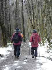 trail, footwear, walking, sports, recreation, outdoor recreation, hiking equipment,