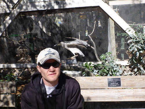 Me and Black-crowned Night-heron