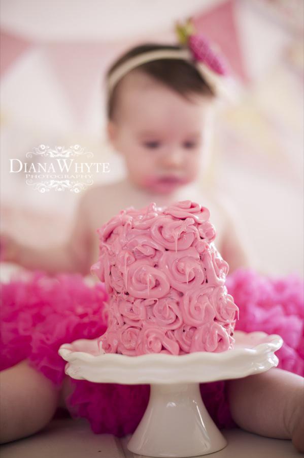 P cake smash 2013 025