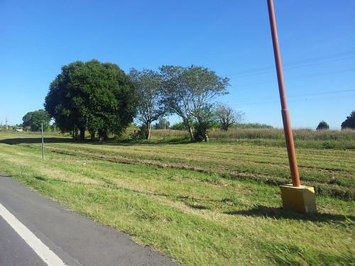 Ciclismo - 162km - Salida a Firmat-V.Tuerto-Carmen-Jardin-Elortondo-Chovet (15)