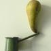 Erg 2011-2012 : AP Com Bach 1 : Panoplie