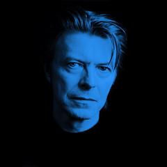 Blue David Bowie - Fridge Boy - Flickr