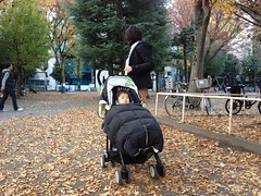 とらちゃんと妻@恵比寿公園(2011/12/4)