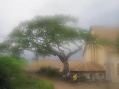 Fianarantsoa-44