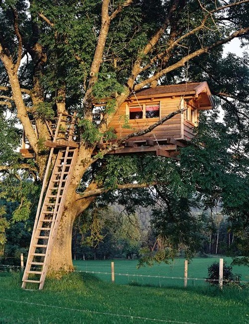 treehouse_013