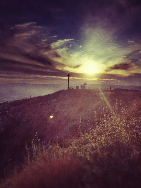 Photo Stream-698
