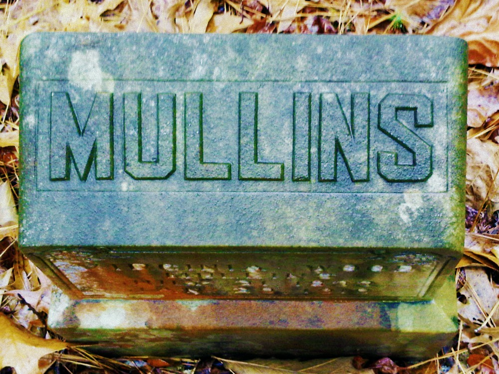 Virginia Wood-Mullins Cemetery, Meriwether County, Ga