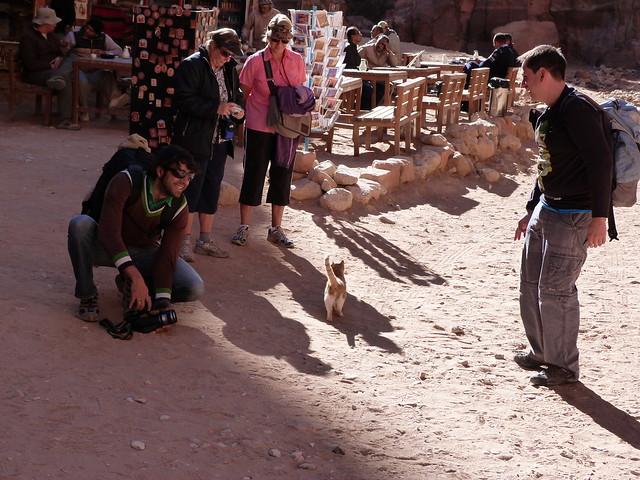 Cosas del directo en Petra