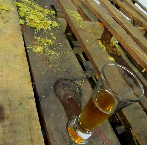Hops and beer on wooden pallet