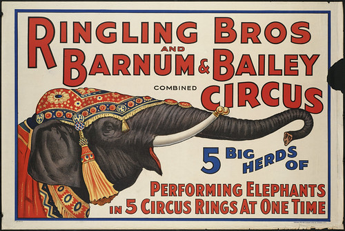 Ringling Bros and Barnum & Bailey Combined Circus : 5 big herds of performing elephants in 5 circus rings at one time by Boston Public Library