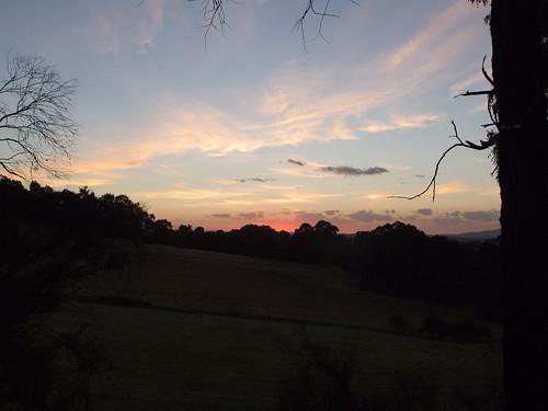 Dawn Cherry Tree Rd