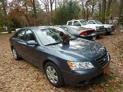 automobile, automotive exterior, executive car, hyundai, vehicle, mid-size car, sedan, land vehicle,