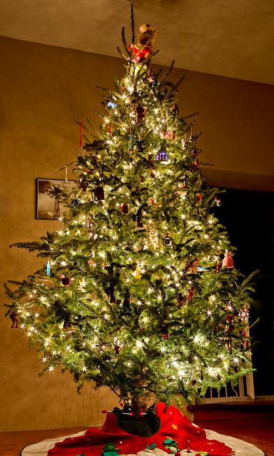 350/365 - December 16, 2011 -  O Christmas Tree