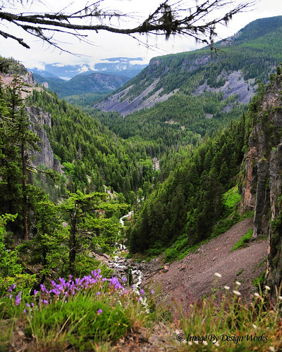 "wild landscape outside outdoors waterfall washington canyon valley wa wilderness overlook ""nationalpark"" ""mtrainier"" ""whitepass"" imagebydesignworks ""pacificnorthwest"" ""clearcreekfalls"" ""wenatcheenationalforest"""