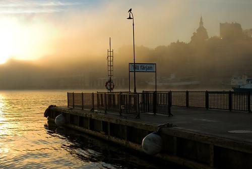 morning fog sunrise sweden stockholm slussen