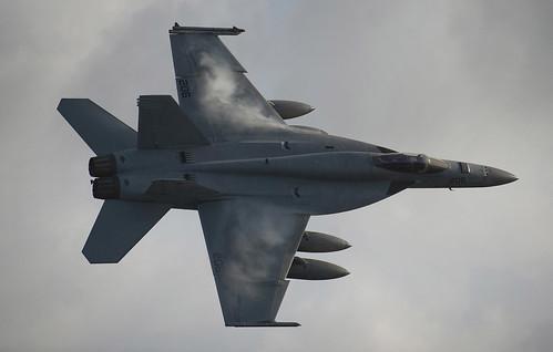 無料写真素材, 戦争, 軍用機, 戦闘機, FAEF スーパーホーネット, アメリカ軍