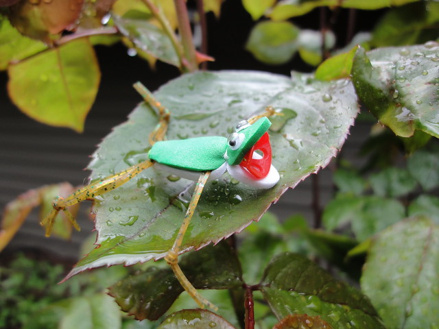 frog tube